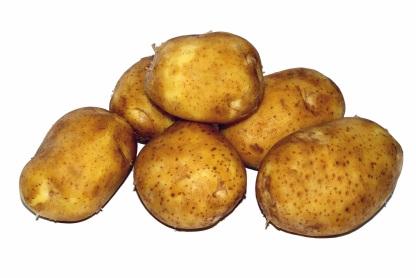potato-1694096